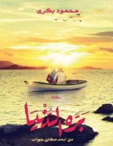 رواية بره الدنيا - محمود بكرى