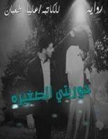 تحميل رواية حوريتي الصغيرة pdf – علياء شعبان