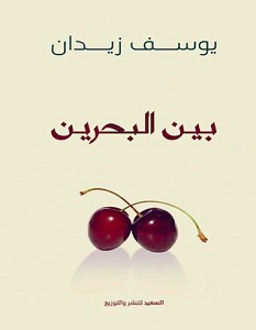 تحميل كتاب بين البحرين pdf – يوسف زيدان