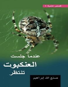 تحميل رواية عندما جلست العنكبوت تنتظر pdf – صنع الله إبراهيم