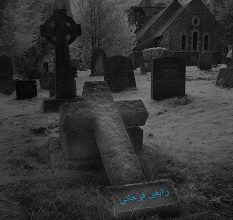 تحميل رواية القبور pdf – رايفين فرجاني